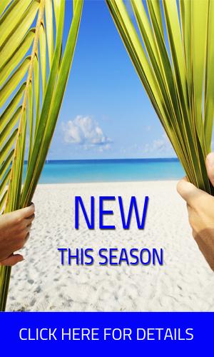 New this Season